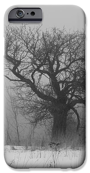 Standing Alone iPhone Case by Alana Ranney