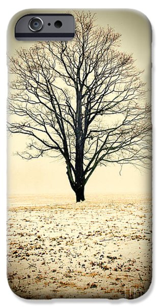 One iPhone Cases - Standing In The Cold iPhone Case by K Hines