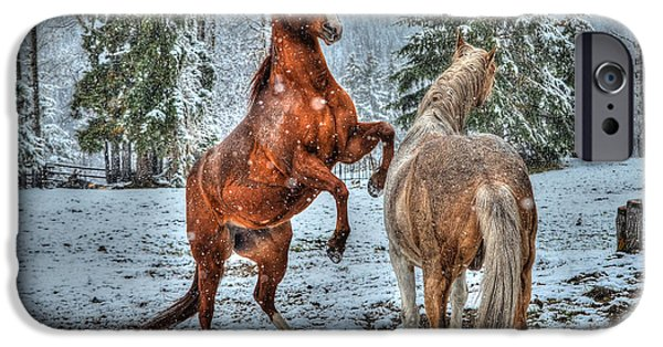 Year Of The Horse iPhone Cases - Standing in the Snow iPhone Case by Skye Ryan-Evans