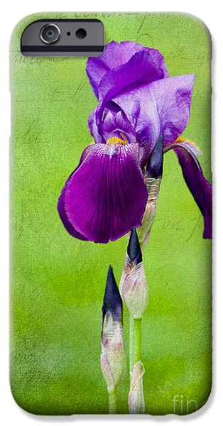 Purple And Green iPhone Cases - Standing Tall Purple Iris iPhone Case by Sharon  Talson