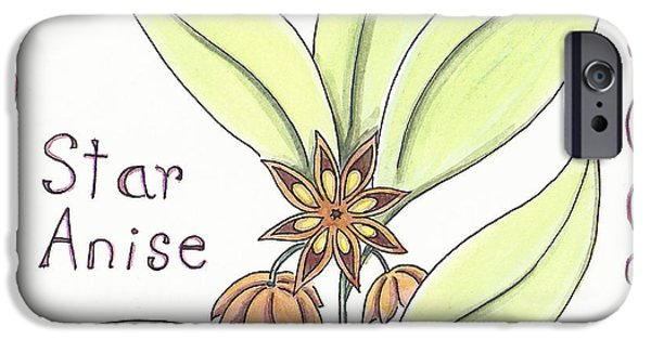 Plant iPhone Cases - Star Anise iPhone Case by Christy Beckwith