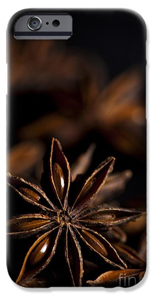 Shape iPhone Cases - Star Anise Study iPhone Case by Anne Gilbert