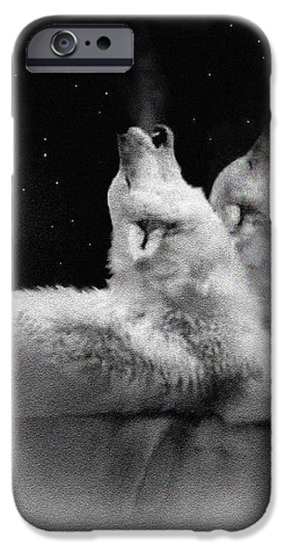 STAR TALKERS iPhone Case by Robert Foster