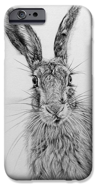 March Hare iPhone Cases - Stare of the Hare iPhone Case by Frances Vincent