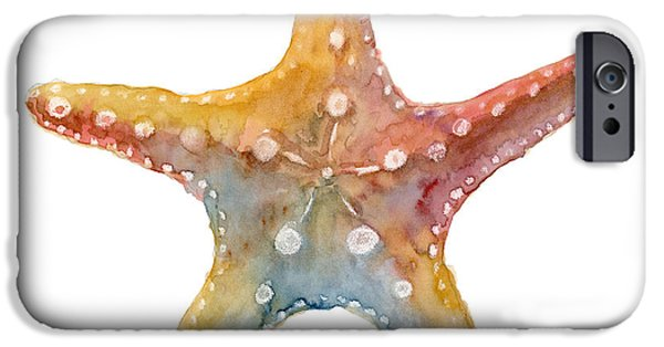 Shells iPhone Cases - Starfish iPhone Case by Amy Kirkpatrick