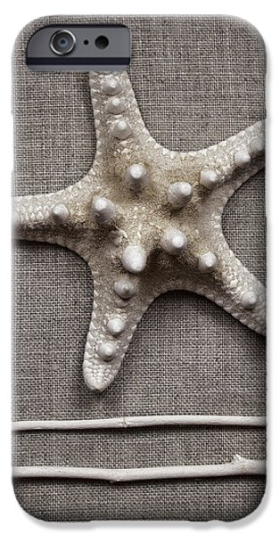 Starfish iPhone Cases - Starfish and Sticks iPhone Case by Carol Leigh