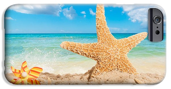 Starfish iPhone Cases - Starfish iPhone Case by Amanda And Christopher Elwell