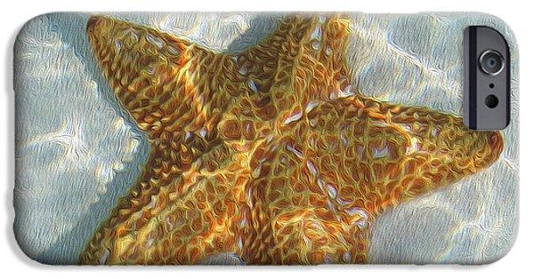 Starfish iPhone Cases - Starfish iPhone Case by Jon Neidert