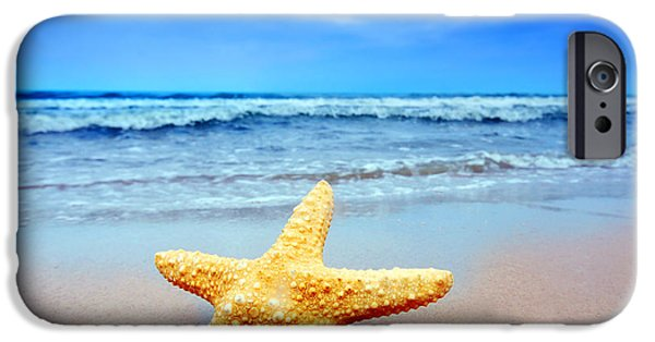 Starfish iPhone Cases - Starfish on a beach   iPhone Case by Michal Bednarek