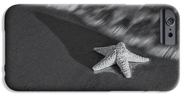 Marine iPhone Cases - Starfish On The Beach BW iPhone Case by Susan Candelario