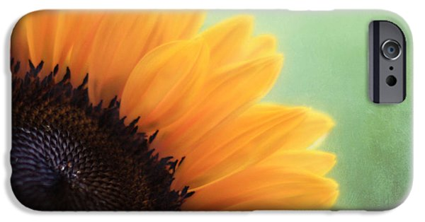 Sunflowers Photographs iPhone Cases - Staring Into the Sun iPhone Case by Amy Tyler