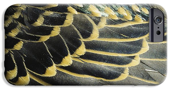 Nature Abstracts iPhone Cases - Starling Feathers iPhone Case by William H. Mullins