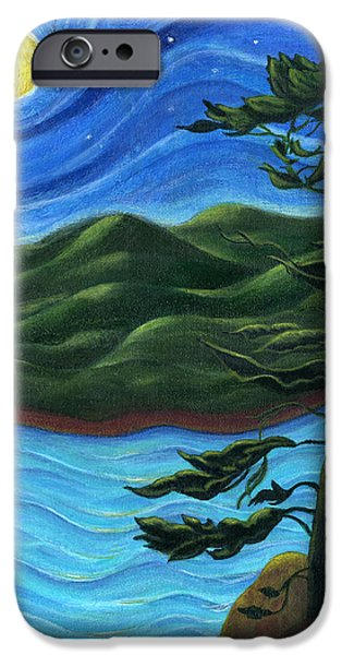 Catherine Howard iPhone Cases - Starry Night at Algonquin Park iPhone Case by Catherine Howard