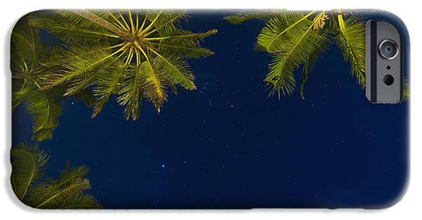 Simple Beauty In Colors iPhone Cases - Stars At Night With Palm Tree Thalpe iPhone Case by Ian Cumming
