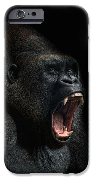 Animals Photographs iPhone Cases - Stay Away iPhone Case by Joachim G Pinkawa