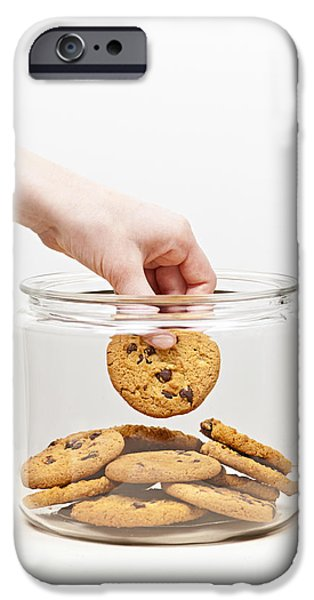 Chip iPhone Cases - Stealing cookies from the cookie jar iPhone Case by Elena Elisseeva