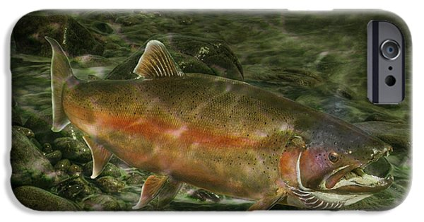 Wild Trout iPhone Cases - Steelhead Trout Spawning iPhone Case by Randall Nyhof