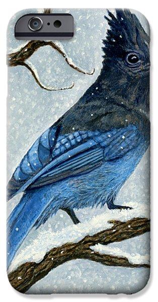 Stellar Paintings iPhone Cases - Stellar Jay in Winter iPhone Case by Ellen Strope