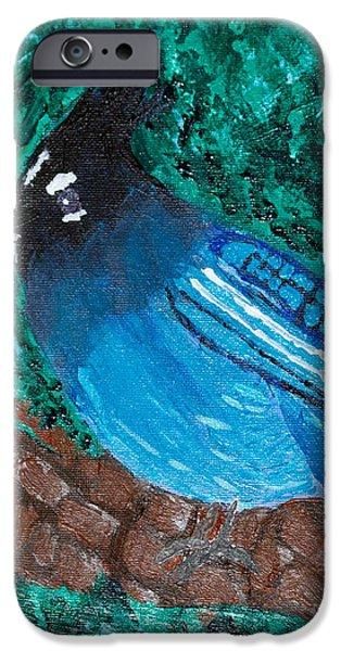 Stellar's Jay iPhone Case by Lloyd Alexander