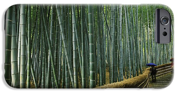 Bamboo Fence iPhone Cases - Stepped Walkway Passing iPhone Case by Panoramic Images