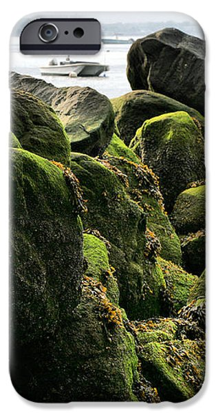 Stepping Stones Park iPhone Case by JC Findley