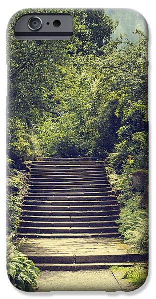 Stone Steps iPhone Cases - Steps iPhone Case by Amanda And Christopher Elwell