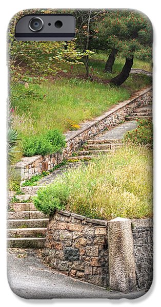 Park Scene iPhone Cases - Steps Guiding The Way iPhone Case by Gill Billington