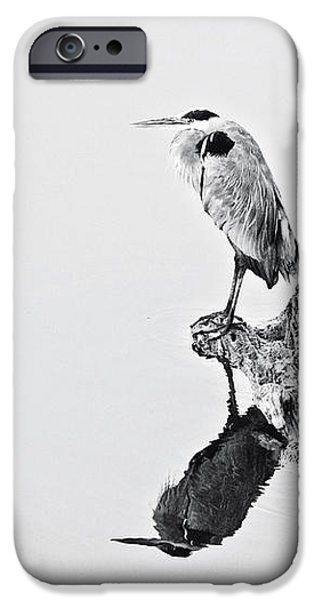 Still Hunter iPhone Case by Scott Pellegrin