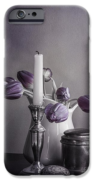 Pages Of Life iPhone Cases - Still Life Study in Purple iPhone Case by Terry Rowe