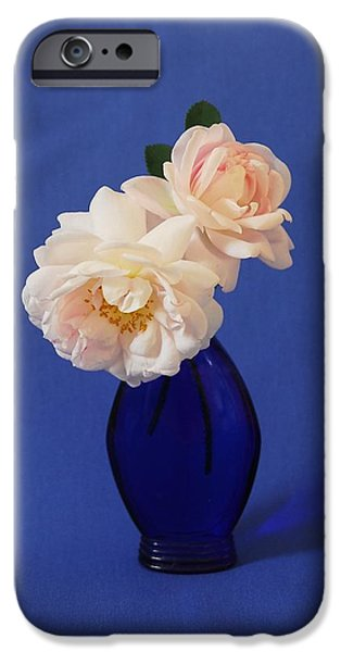 Buy iPhone Cases - Still life wild rose iPhone Case by Linda Covino