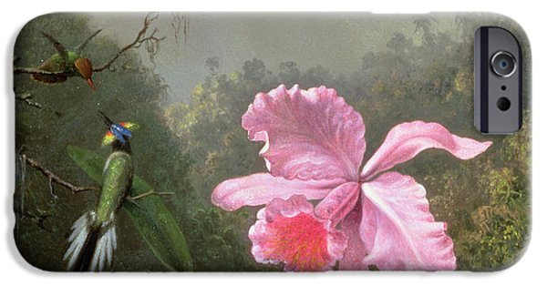 In Bloom Paintings iPhone Cases - Still Life with an Orchid and a Pair of Hummingbirds iPhone Case by Martin Johnson Heade
