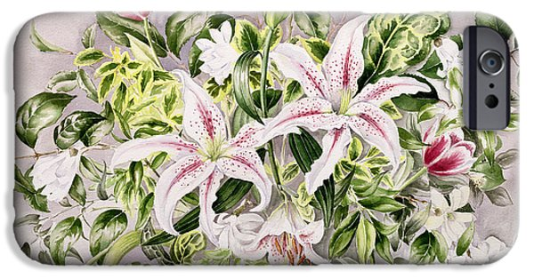 Flora Drawings iPhone Cases - Still life with Lilies iPhone Case by Alison Cooper