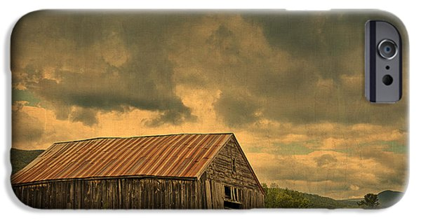 Rural Maine Roads iPhone Cases - Still Standing iPhone Case by Alana Ranney