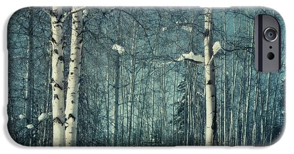 Wintertime iPhone Cases - Still Winter iPhone Case by Priska Wettstein