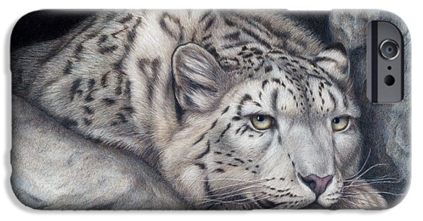 Colored Pencils iPhone Cases - Stillnes Like a Stone iPhone Case by Pat Erickson