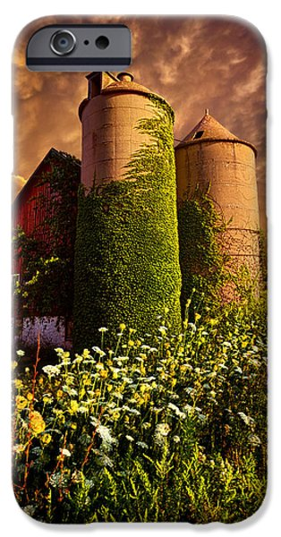 Silos iPhone Cases - Stillness Of Dawn iPhone Case by Phil Koch