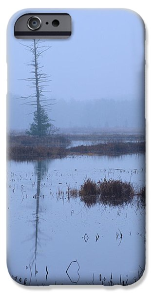 Tiger Musky iPhone Cases - Stillness on the Flowage - Northwoods iPhone Case by Bruce Thompson
