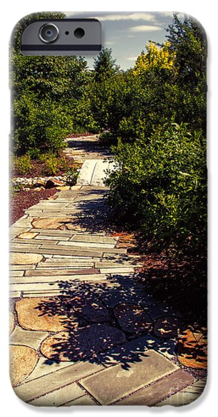 D.c. iPhone Cases - Stone pathway iPhone Case by Tom Gari Gallery-Three-Photography