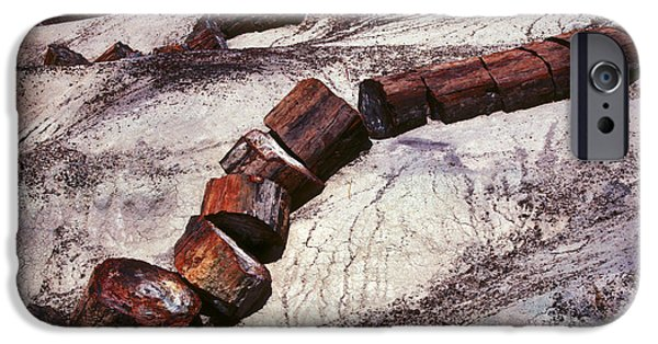 Petrified Forest Arizona iPhone Cases - Stone Trees - 336 iPhone Case by Paul W Faust -  Impressions of Light