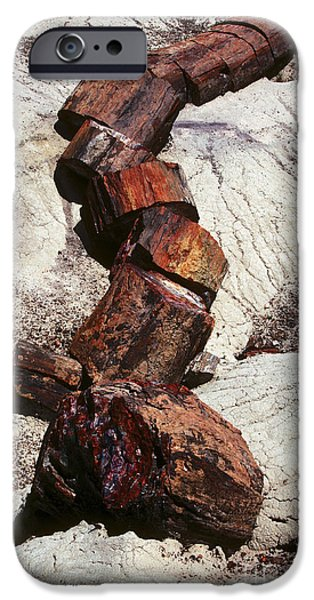 Petrified Forest Arizona iPhone Cases - Stone Trees - 337 iPhone Case by Paul W Faust -  Impressions of Light