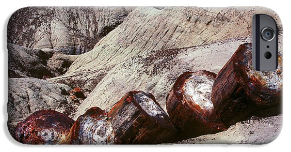 Petrified Forest Arizona iPhone Cases - Stone Trees - 360 iPhone Case by Paul W Faust -  Impressions of Light