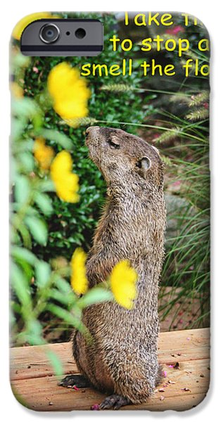 Groundhog Digital Art iPhone Cases - Stop and Smell the Flowers iPhone Case by Trina  Ansel