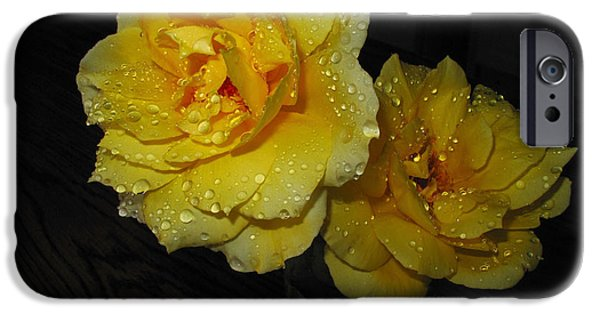 Mount Rose iPhone Cases - Stop And Smell The Roses iPhone Case by Joyce Dickens