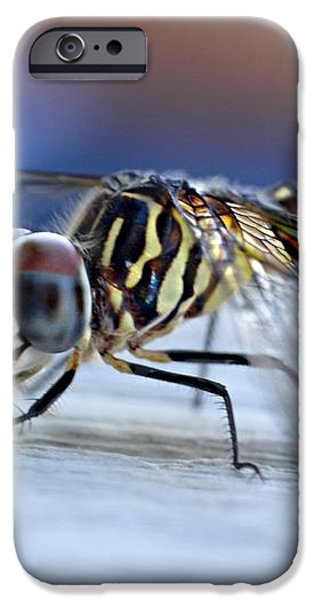 Stop By Tiger Dragon fly iPhone Case by Peggy  Franz