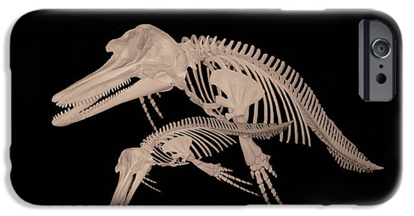Fund For Animals iPhone Cases - Stop Think iPhone Case by Eric Kempson