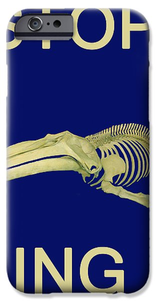 Fund For Animals iPhone Cases - STOP Whaling  iPhone Case by Eric Kempson