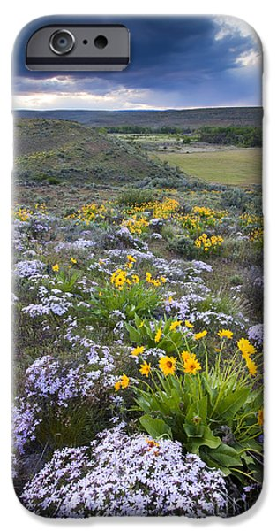 Storm iPhone Cases - Storm over Wildflowers iPhone Case by Mike  Dawson