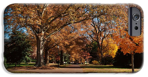 Nature Study iPhone Cases - Straight Ahead to Richardson Stadium - Davidson College iPhone Case by Paulette B Wright