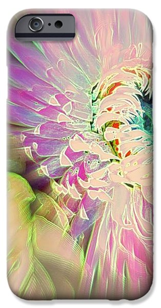 Strawflower Awakening iPhone Case by Shirley Sirois