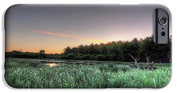 Nature Center Pond iPhone Cases - Streaky Swamp Sunrise iPhone Case by Deborah Smolinske
